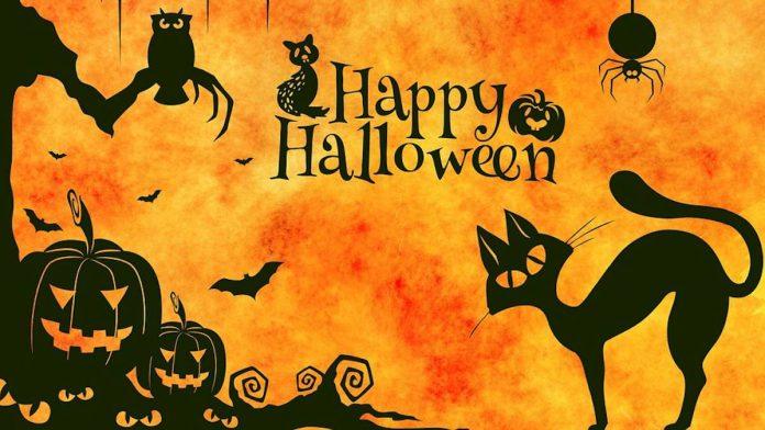 Qué hacer en Halloween?